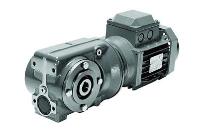 Motor giảm tốc trục ren xiên